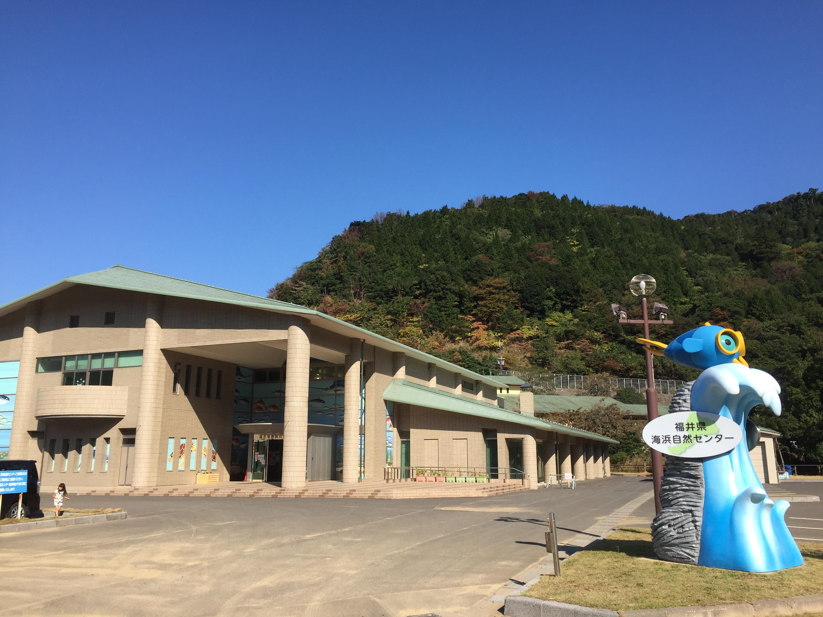 福井県海浜自然センターで子どもと遊び方!