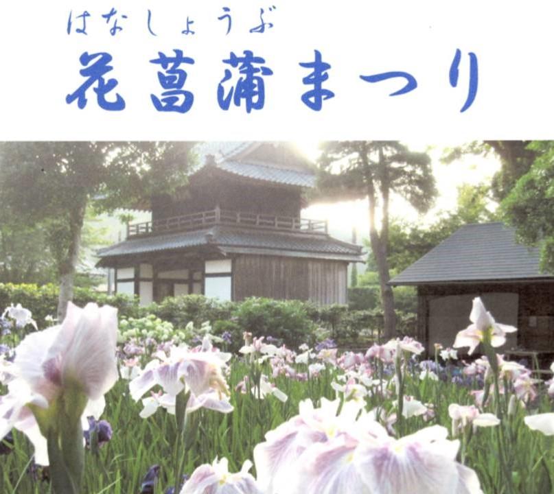 2018年 常高寺「花菖蒲(しょうぶ)まつり」