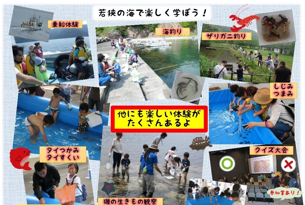 2018.5.12~13 福井県海浜自然センターイベント