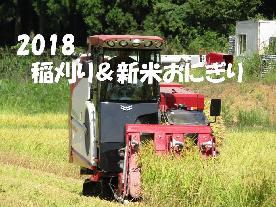 2018 稲刈り&新米おにぎり(小浜市)