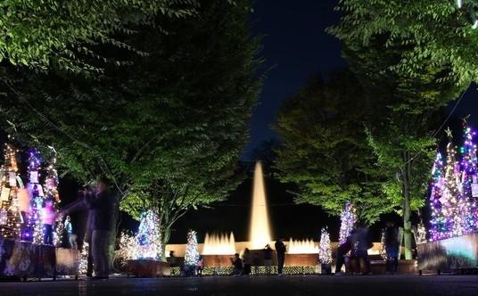 2018 西山公園イルミネーション「光でつなぐ家族の絆」