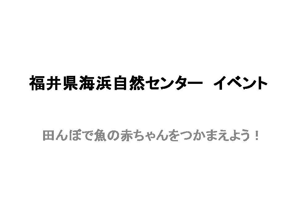 2019.6.23 福井県海浜自然センター イベント