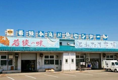 若狭小浜お魚センター (小浜市) 2021.05.01時点 営業中(水曜日は休業日です)