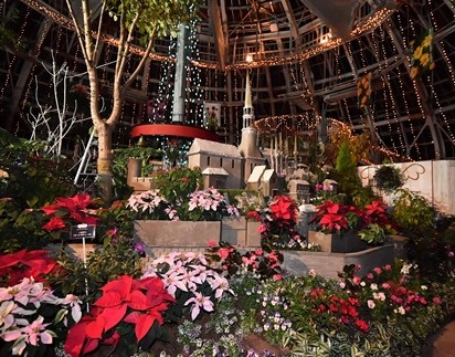 2018 福井県総合グリーンセンター クリスマスイルミネーション