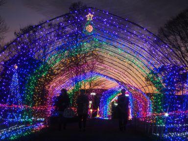 花と光のクリスマス(兵庫県)
