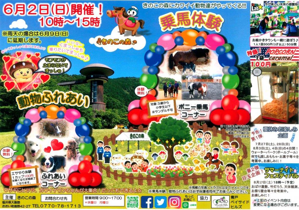 2019 乗馬体験&動物ふれあいの開催! (きのこの森)